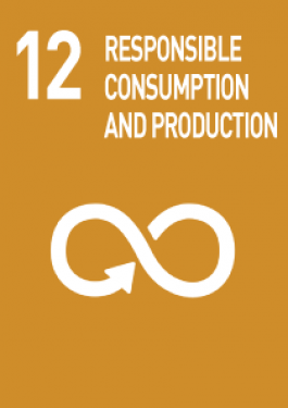 12- responsible consumption and production