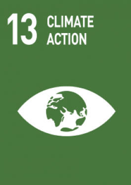 13- climate action